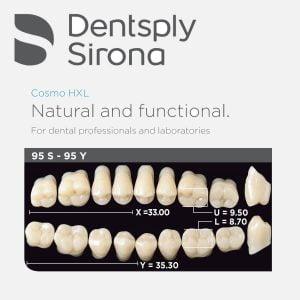 Dentsply Cosmo HXL Acrylic Teeth